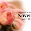 Festive month November