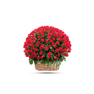 100 RED ROSE ROUND BASKET
