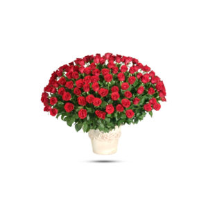 100 rose round basket
